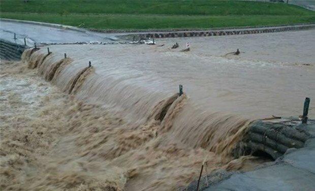 30 درصد اراضی کشاورزی دهلران بر اثر سیل آسیب دید
