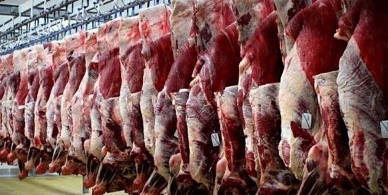 خریداری 550 تن گوشت قرمز و سفید از تولیدکنندگان البرزی