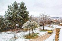 هوای بهاری اردبیل زمستانی شد  بارش برف در راه است