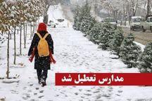 برف و برودت هوا مدارس برخی شهرهای کردستان را تعطیل کرد