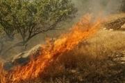 شعله ور شدن مجدد جنگل های گچساران
