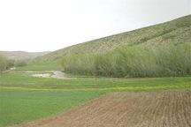 2.5 میلیارد ریال از اراضی ملی در پلدشت خلع ید شد