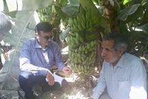 120 شهرک کشاورزی در کشور فعال است