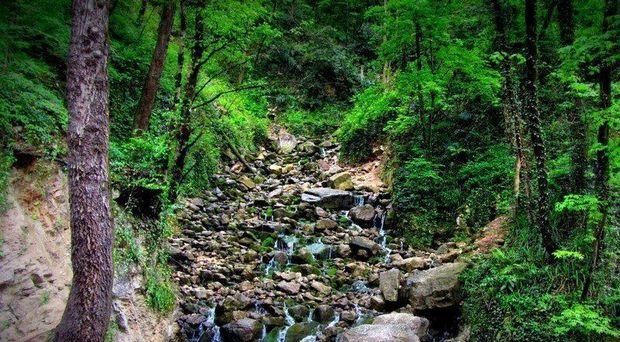 """آبشار """"آبپری"""" گردشگری در میان جنگل و مه در پائیز مازندران"""