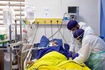 تا کنون ۱۶۱ نفر در هرمزگان به ویروس کرونا مبتلا شده اند