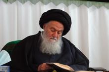 سید محمد حسینی شاهرودی که بود؟/علت محبوبیت ایشان چه بود؟/چرا مجبور به ترک عراق شد؟