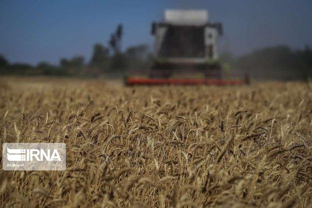 سرمایهگذاران کشاورزی در گرمی مغان نیازمند حمایت هستند