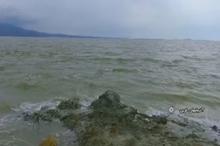 حیات در رگ های دریاچه ارومیه