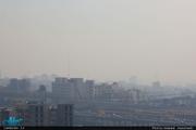 آلودگی هوا موجب افزایش پرخاشگری می شود