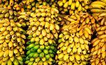 با مصرف این میوه سلامت بدن خود را تضمین کنید