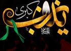 دانلود روضه حضرت زینب سلام الله علیها/ حاج آقا مجتبی تهرانی