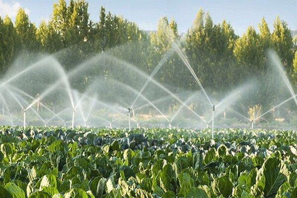 پرداخت 141 میلیارد ریال تسهیلات به بخش کشاورزی گچساران