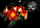 دانلود مداحی شهادت امام هادی علیه السلام/ امیر برومند