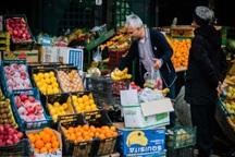سازمان میادین: تابع سیاست های دولت در توزیع گوشت هستیم