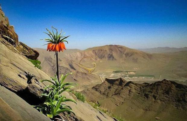ورود به مناطق حفاظت شده همدان تا 15 خرداد ممنوع شد