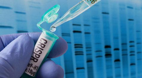 مرگ زودرس اولین نوزادان مهندسی ژنتیک شده در جهان