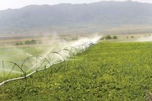 مصرف آب در اراضی زراعی آذربایجان غربی 22 میلیون مترمکعب کاهش یافت