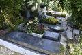 خرید و فروش قبرهای لاکچری در لواسان