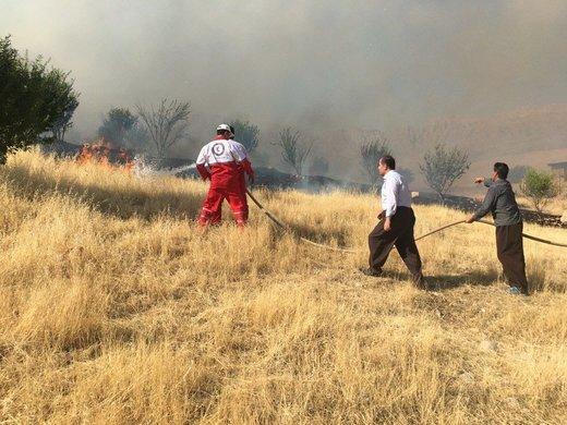 آتشسوزیهای امسال ۴۰۰ هکتار مرتع البرز را خاکستر کرد