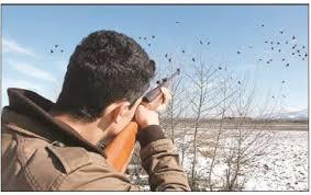 دستگیری 2 شکارچی غیر مجاز در کوه های البرز