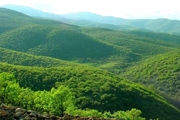صیانت از جنگل های سردشت وظیفه همه مردم و مسوولان منطقه است