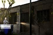 روستاهای حاشیه شهر زاهدان ضدعفونی و گندزدایی شدند