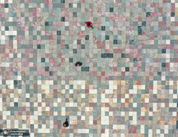 منتخب تصاویر امروز جهان- 5 اردیبهشت 1400