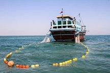 صیادان بوشهر خواستار لغو دریا بست شدند
