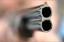 دستگیری 3 عامل تیراندازی هوایی در هشترود