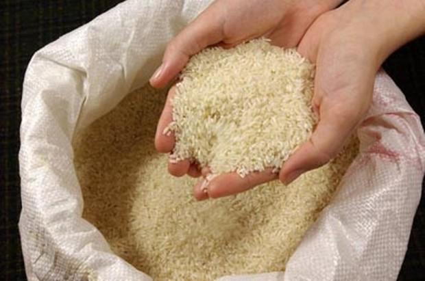 820 تن برنج دولتی در مازندران توزیع می شود