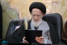 آیت الله شبیری زنجانی: خدمت به این کشور پاداش مضاعف دارد