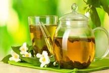 بایدها و نباید های استفاده از چای سبز