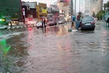 بارندگی به شهرستان جویبار 500 میلیارد ریال خسارت زد