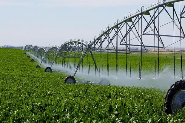 39 میلیون مترمکعب آب در بخش کشاورزی ملایر صرفه جویی شد