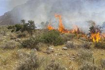 آتش سوزی مراتع در خلخال مهار شد