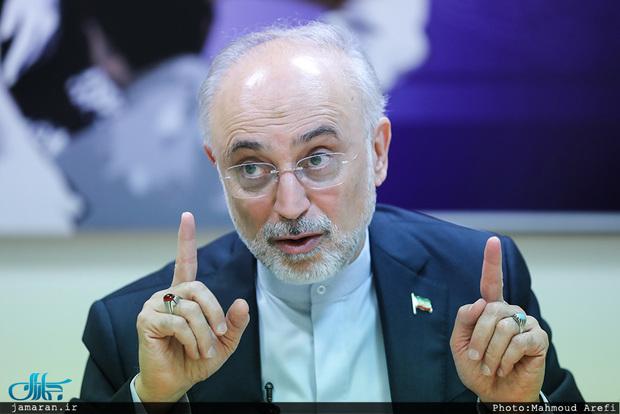 صالحی: مذاکرات وین خوب جلو میرود/ دست ایران بسیار پر است