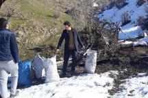 318 کیلوگرم زغال قاچاق در مریوان کشف و ضبط شد