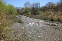 141 انجمن حفاظت از منابع طبیعی در کرمان تشکیل شد