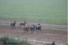 68 اسب در هفته دوم مسابقات اسبدوانی گنبد رقابت کردند