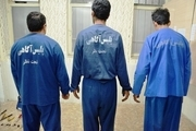 سه سارق حرفه ایی در بیجار دستگیر شدند