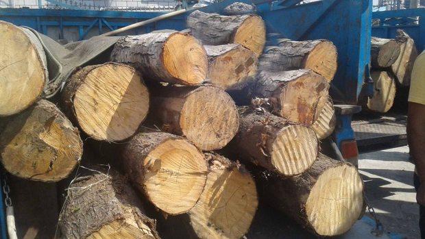 کشف بیش از 3 تن چوب جنگلی قاچاق در لردگان