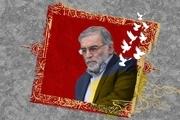 چند سوال درباره ترور شهید فخریزاده