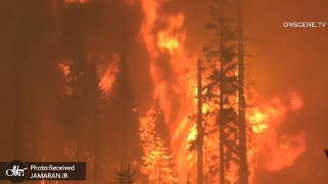 آلودگی ناشی از آتشسوزیهای جنگلی بر شیوع کرونا تاثیر دارد