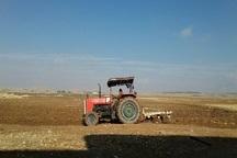 آغاز کشت پاییزه گندم در 57 هزار هکتار از زمینهای کشاورزی کهگیلویه