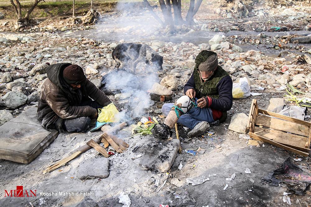 ابتلای 24 معتاد متجاهر شیراز به کرونا