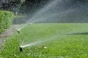 مصرف آب در حوزه آبیاری فضای سبز بیرجند ۲۰ درصد کاهش یافت
