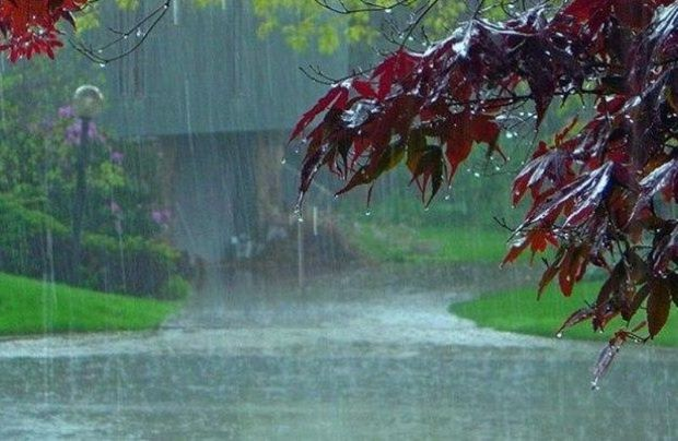 باران در ۱۰ شهرستان خراسان رضوی بارید