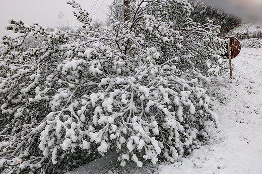 بارش اولین برف پاییزی در آذربایجانغربی   همه راههای استان باز است