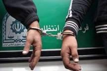 دستگیری سارقان حرفهای سیم و کابل برق در بناب