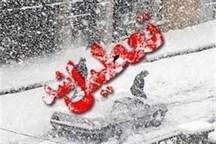 برف مدارس اشتهارد و طالقان را تعطیل کرد